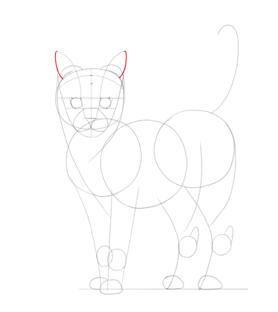 Add two more curved lines to finish the outline of the ears