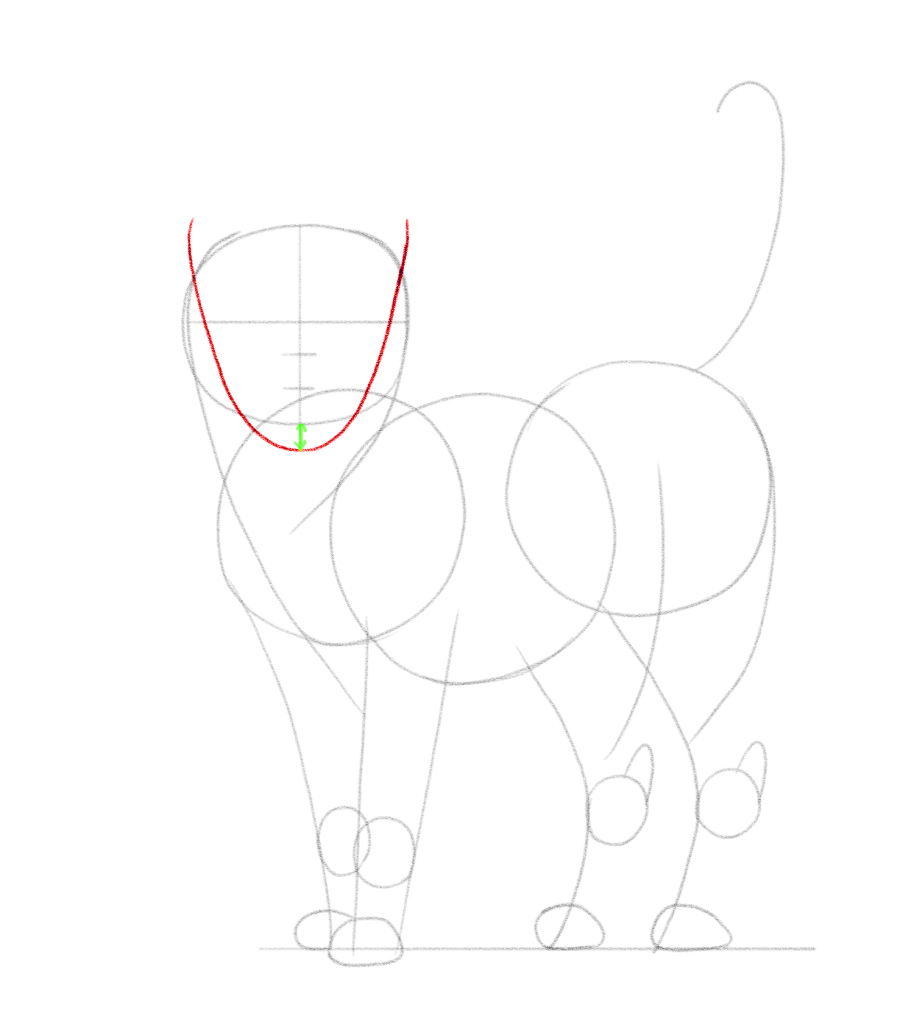 Add a curved line to outline the face