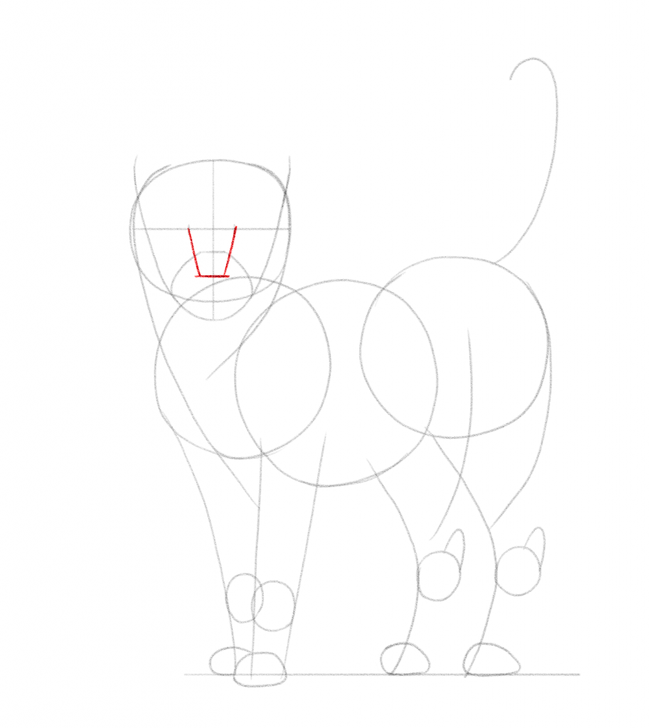 Connect these marks with the lower third to create the outline of the cat's nose