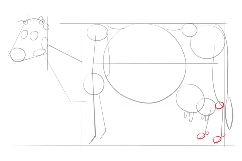 Draw Circles for Leg Joint and Hooves