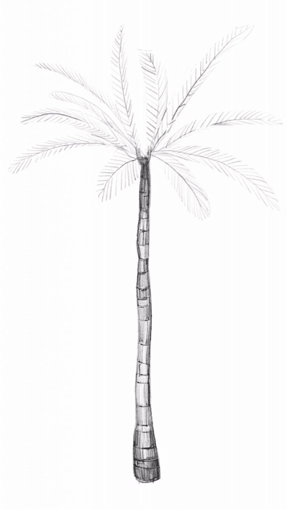 Remove the guidelines from your palm leaves
