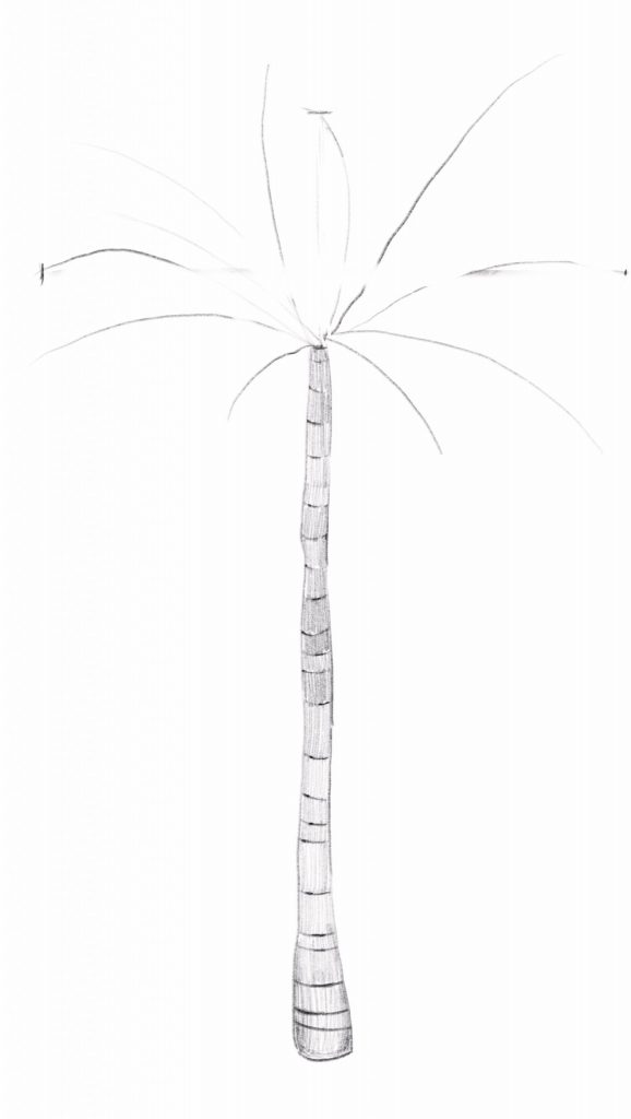 Add tone to your palm tree trunk