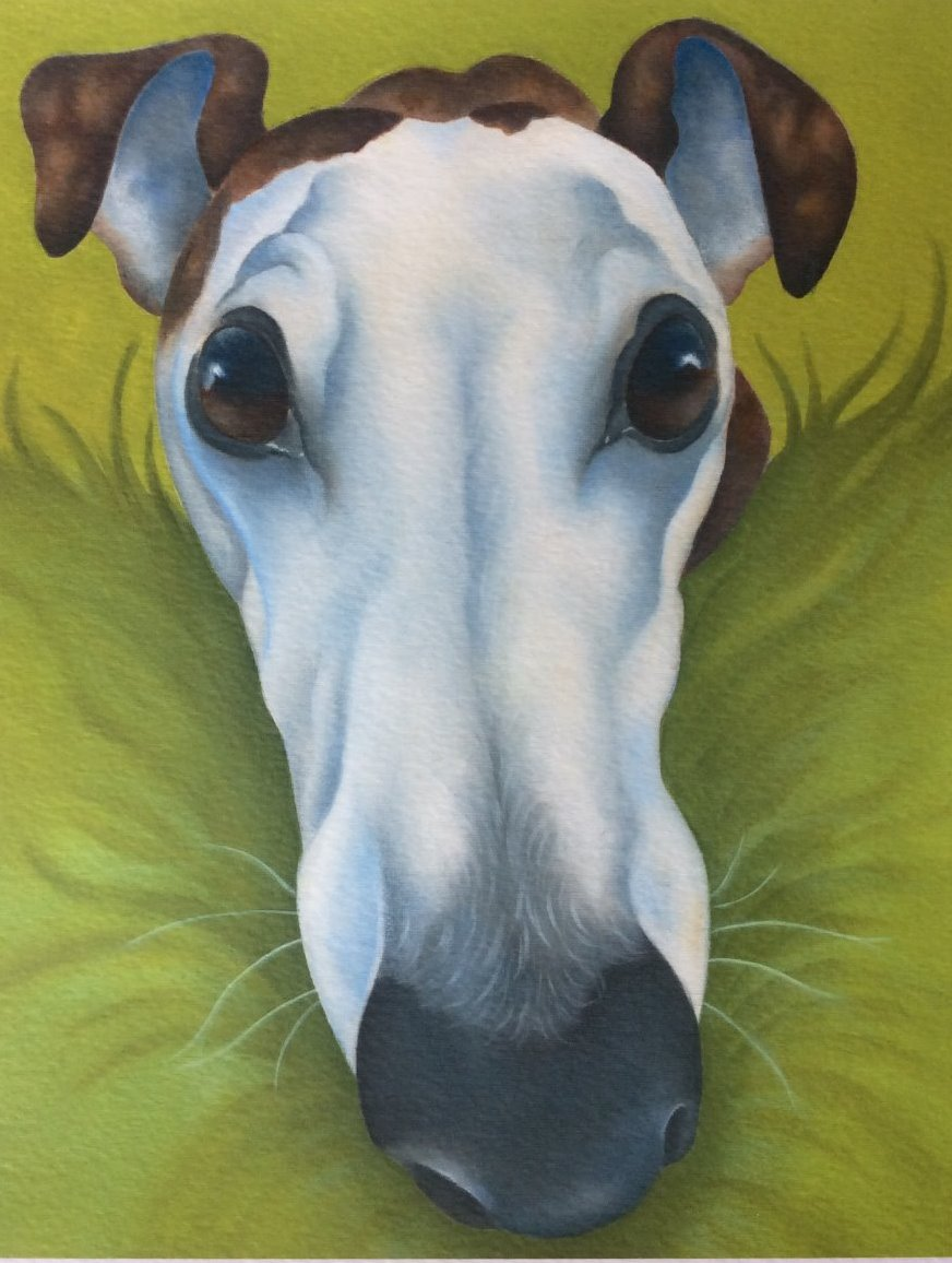 Zip the greyhound painting