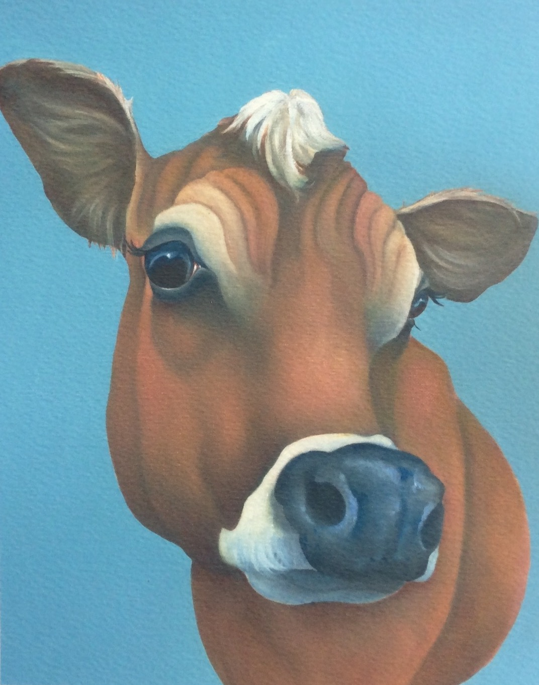 Clover the jersey cow painting