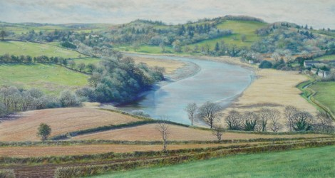 The River Tamar from Braunder Farm