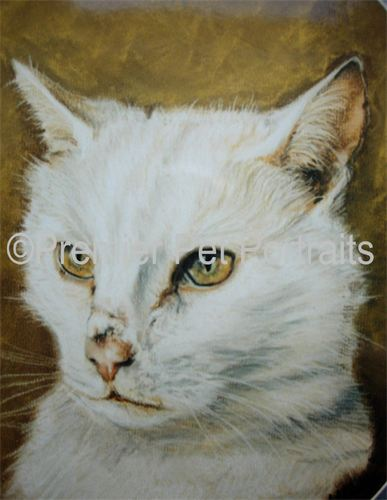 Cat Portrait - Pastel Painting