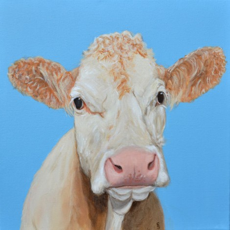 Cow and blue sky 1