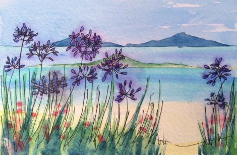 Scilly Agapanthus
