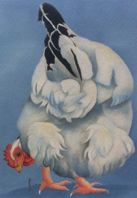 lucy the light sussex chicken painting