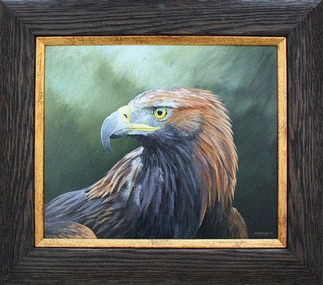 Study of A Golden Eagle