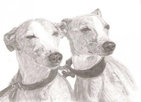 Greyhound Dog Pair Signed Print