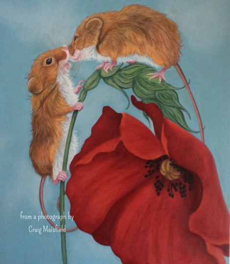 Harvest mice and poppy painting