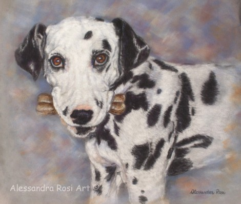 Dog portrait - Dalmatian Dog in Pastel